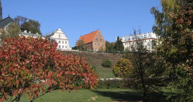 dom_dlugosza